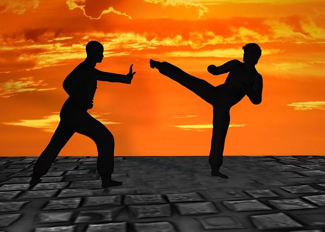bojová umění ve hře