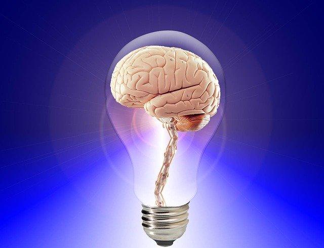 mozek v rozsvícené žárovce